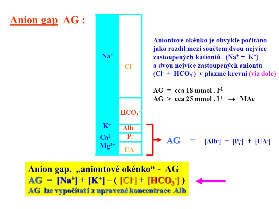 Anion gap AG : AG = [Alb-] + [Pi-] + [UA-]